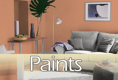paint-sub